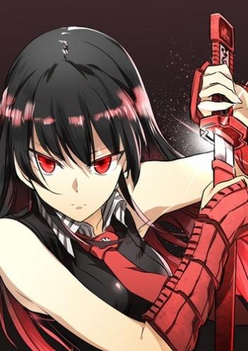 Убийца Акаме! (HD-720 качество) все серии подряд / Akame ga Kill! (2014)